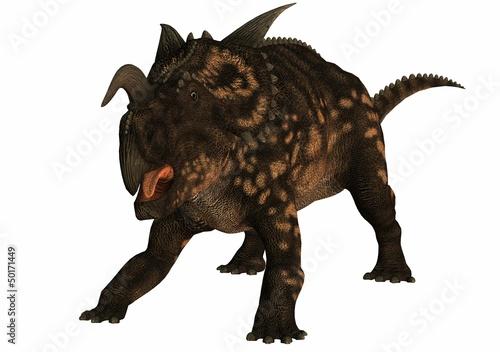 Fotografie, Obraz  einiosaurus