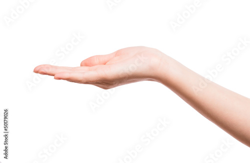 Woman's hand holding something Wallpaper Mural