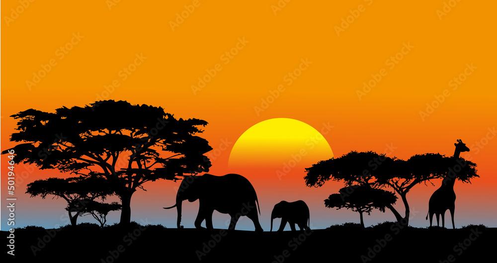 Fototapeta African savanna