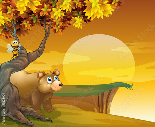 Tuinposter Beren A big brown bear looking at the sunset