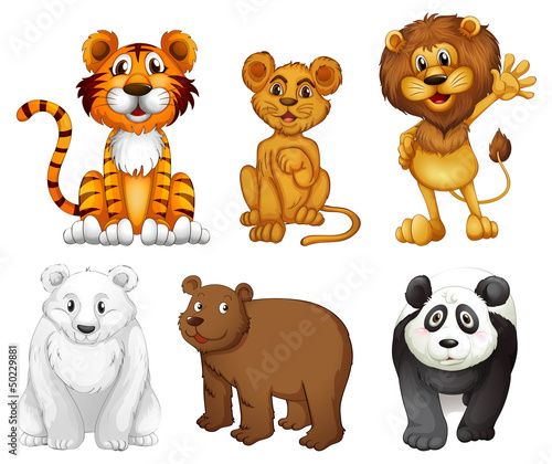 Papiers peints Ours Six wild animals