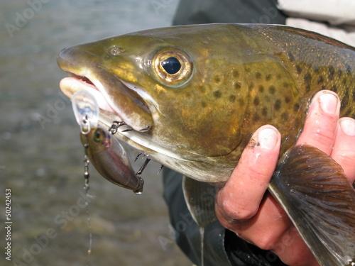 Fotobehang Fishing