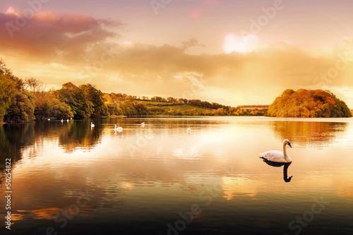 jezioro-labedzie