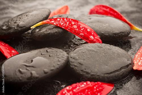 czerwone-liscie-wsrod-bazaltowych-kamieni