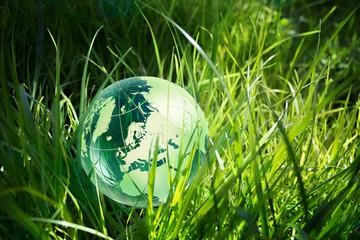 Panel Szklany Podświetlane Do biura glass globe in the grass