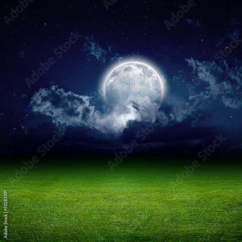 noc-zielone-pole