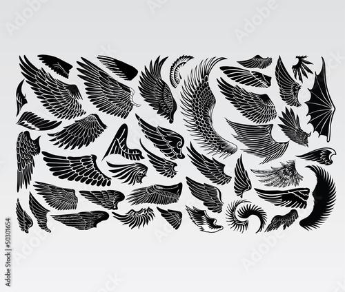Obraz na płótnie wings