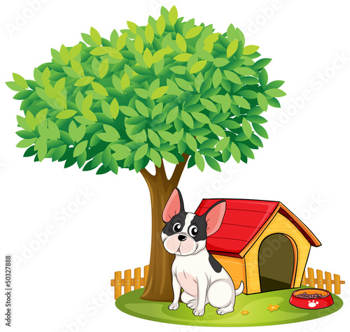 A doghouse and a dog under a tree
