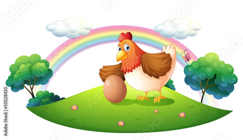 Photo sur Toile Ferme A chicken with an egg