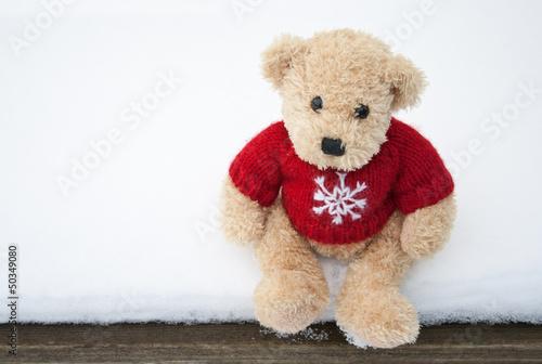 teddy bear #50349080