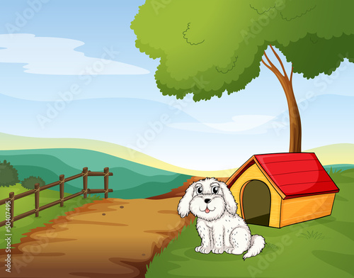 Poster Dogs A white dog sitting in front of a dog house