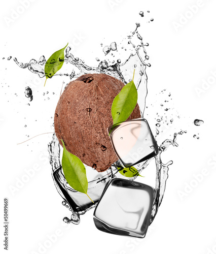 Poster In the ice Coconut with ice cubes, isolated on white background