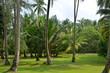 Pulau Sibu tropical island holiday resort, Malaysia