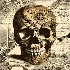Vintage Skull background