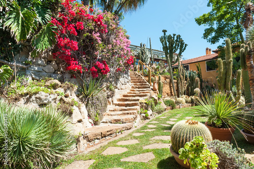 Garden of exotic plants Pallanca