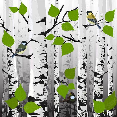 w-lesie-ptaki-na-drzewach-wektor