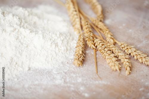 Valokuva mehl und korn