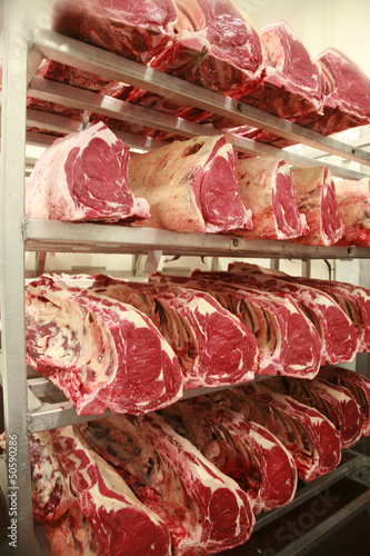 Cuts of beef on shelves in an abattoir Canvas Print