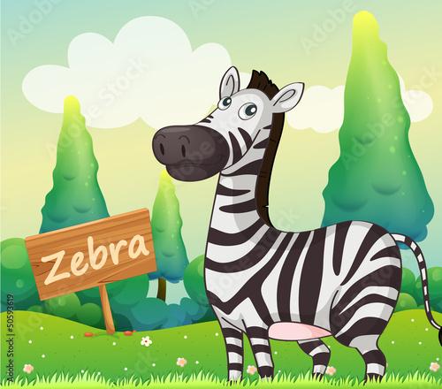 Poster de jardin Zoo A zebra beside a signboard