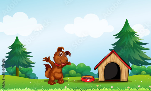 Tuinposter Honden A playful brown puppy