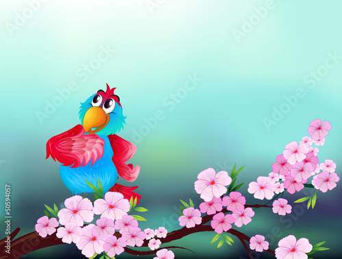 Poster Oiseaux, Abeilles A parrot at the branch of a tree with pink flowers