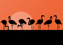 Flamingo Silhuettes In Sunset Landscape Illustration Background
