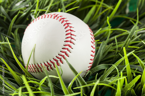 Papiers peints Azalea New White Baseball in green grass