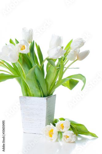 biale-tulipany-w-drewnianej-donicy