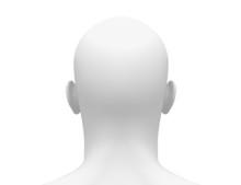 Blank White Male Head - Back View