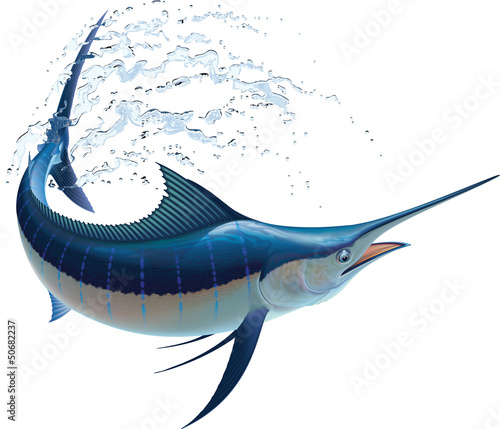 Canvas Print Blue Marlin