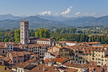 Lucca Panoramic View, Tuscany, Italy