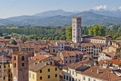 Fototapety, obrazy: Lucca panoramic view, Tuscany, Italy