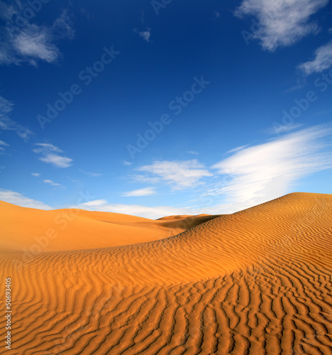 Photo  evening desert landscape