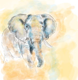 Elephant aquarelle painting imitation
