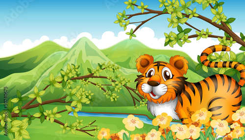 Poster de jardin Zoo A tiger in the mountain near the flowing river