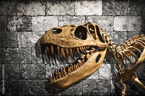 tyrannosaurus-rex-szkielet-w-tle-kamiennej-sciany