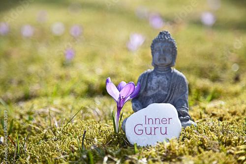Inner Guru Slika na platnu