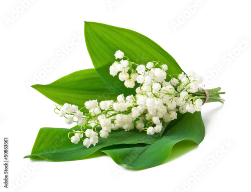 Wall Murals bouquet of lilies of the valley isolated on white background