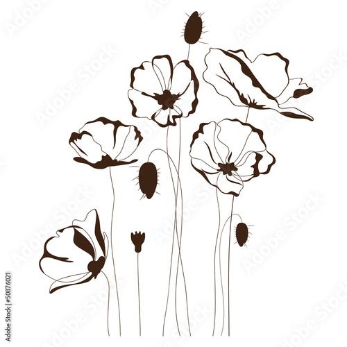 Plakat w ramie Polne kwiaty - szkic