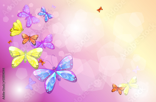 Keuken foto achterwand Vlinders A stationery with colorful butterflies