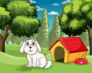 Bijelo štene izvan svoje pseće kućice