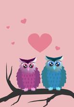 Verliebtes Eulenpaar