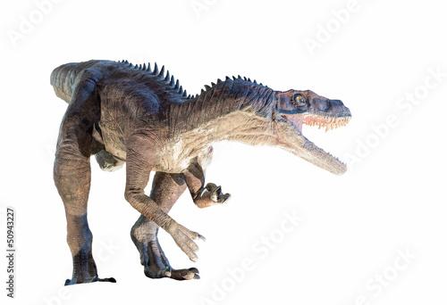 Naklejka premium Przywrócenie dinozaura Herrerasaurus na białym tle