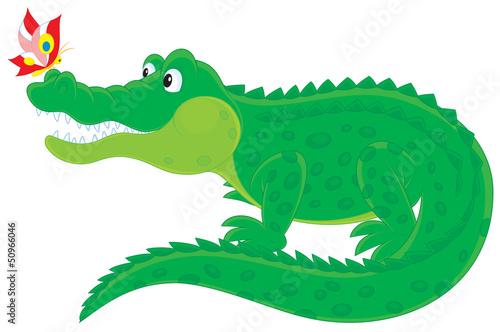 duzy-zielony-aligator