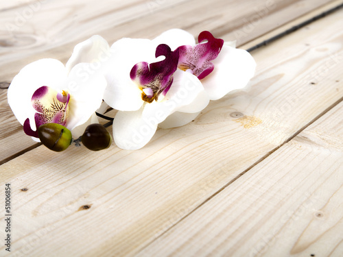 Photo Stands Orchid Blume auf Holz