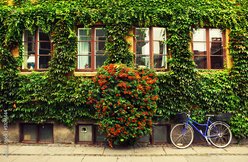 The bicycle in Copenhagen. Wallpaper Mural