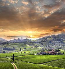 Fototapeta Toskania Chianti vineyard landscape in Tuscany, Italy