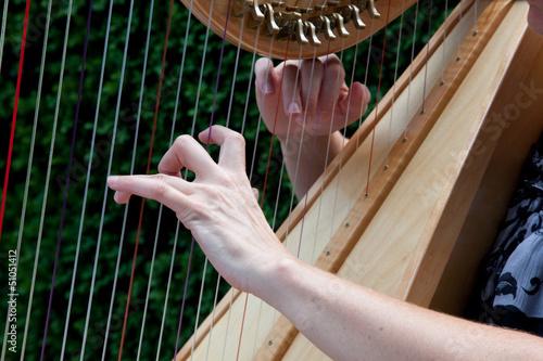 Fényképezés  Fingers playing the harp