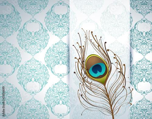 Fototapeta na wymiar peacock feather and ornamental wallpaper