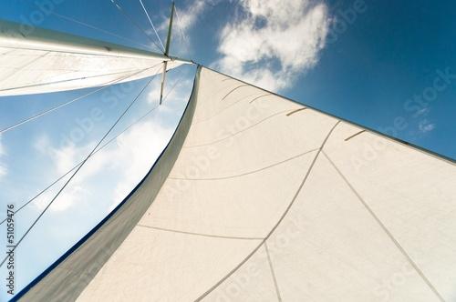 Fotografie, Obraz  Sail of a sailing boat